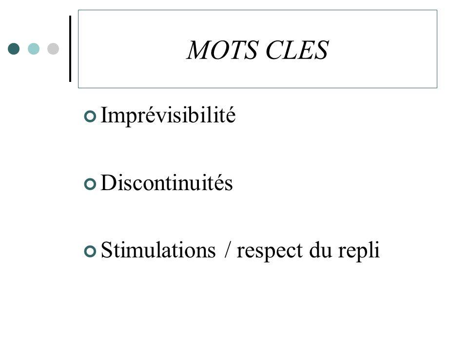 MOTS CLES Imprévisibilité Discontinuités