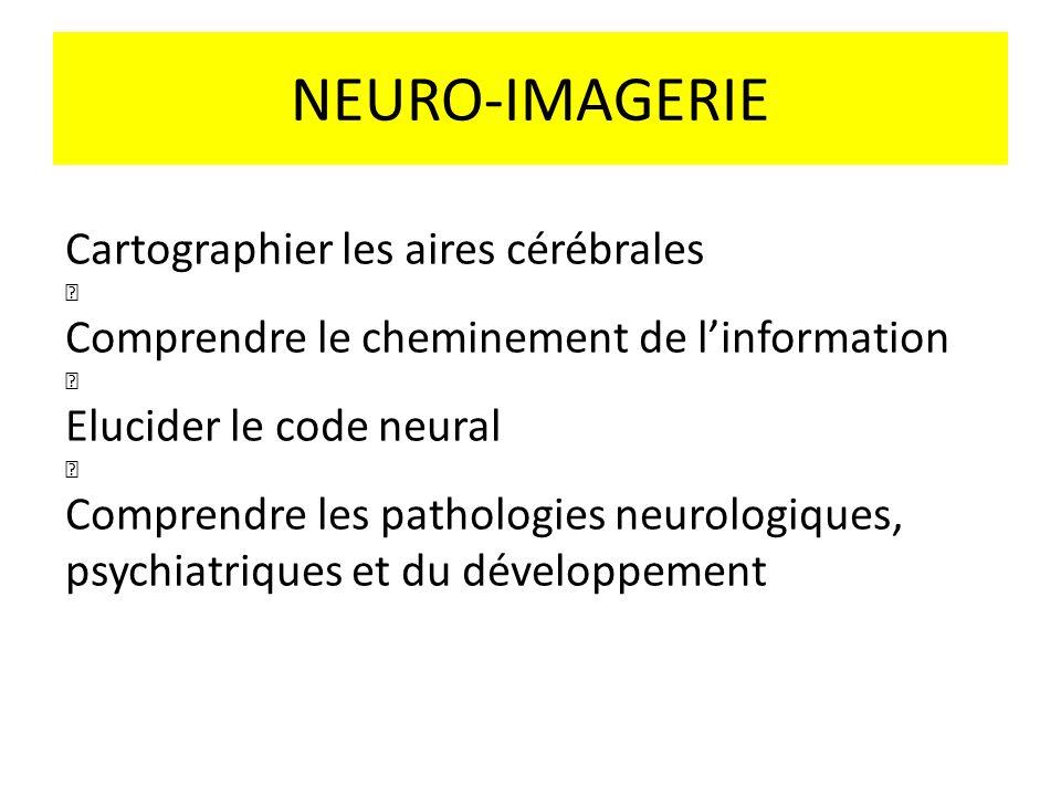 NEURO-IMAGERIE Cartographier les aires cérébrales