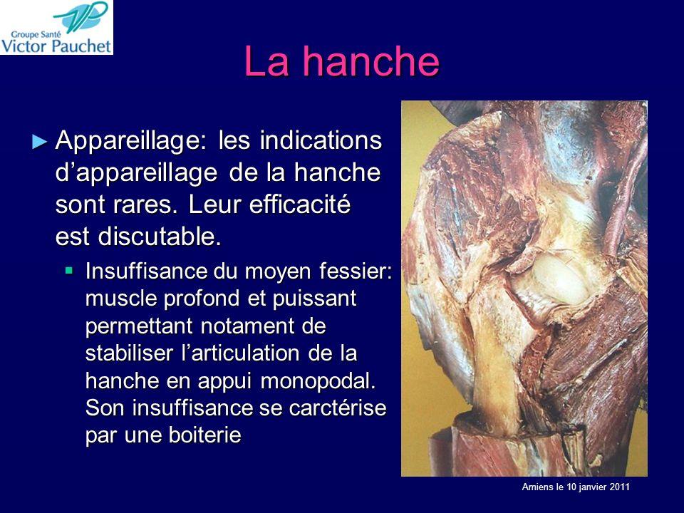 La hanche Appareillage: les indications d'appareillage de la hanche sont rares. Leur efficacité est discutable.