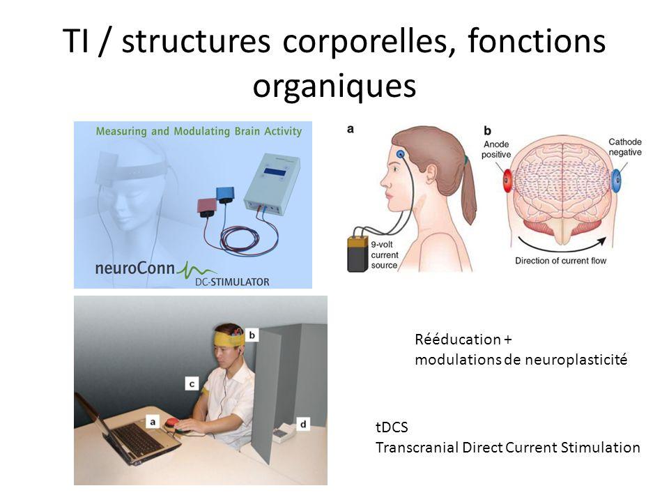 TI / structures corporelles, fonctions organiques