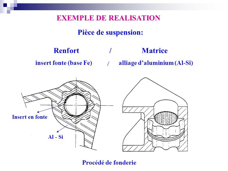 Pièce de suspension: Renfort / Matrice