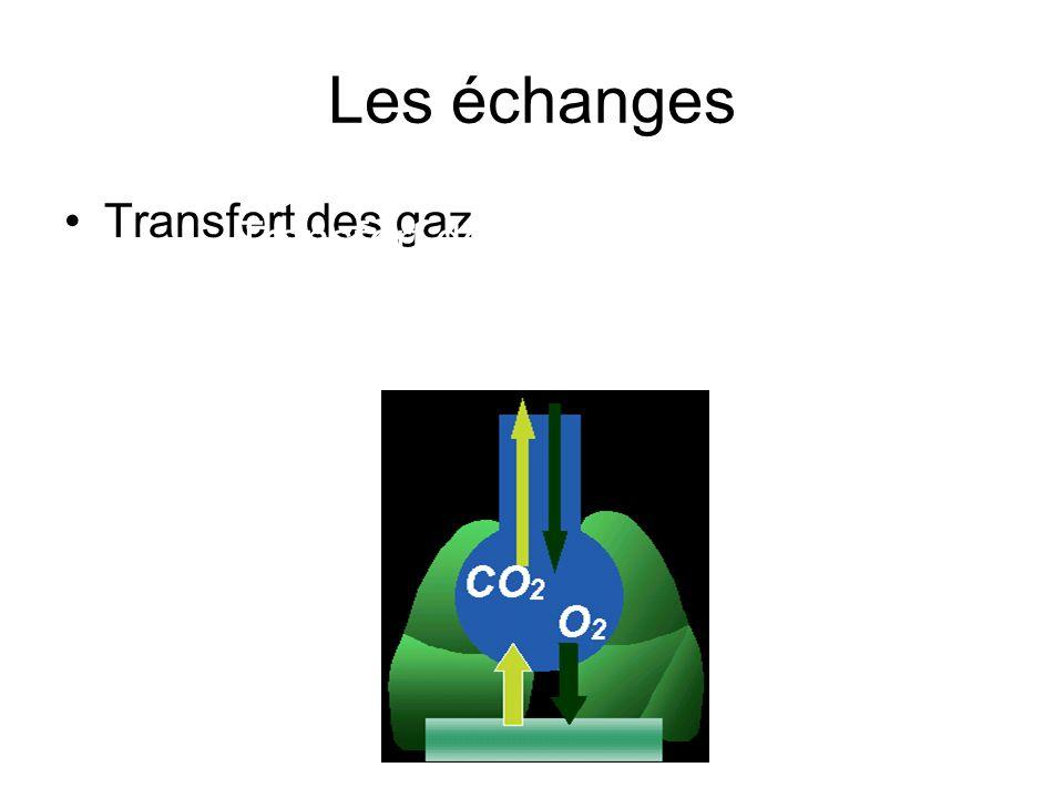 Transfert de gaz de l'alvéole