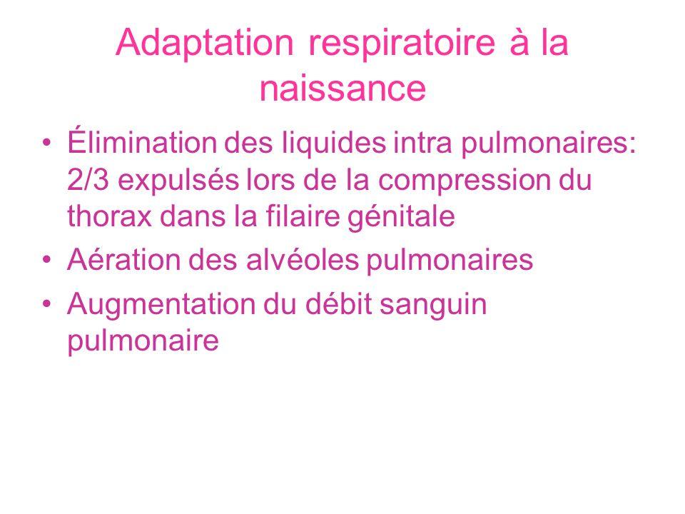 Adaptation respiratoire à la naissance