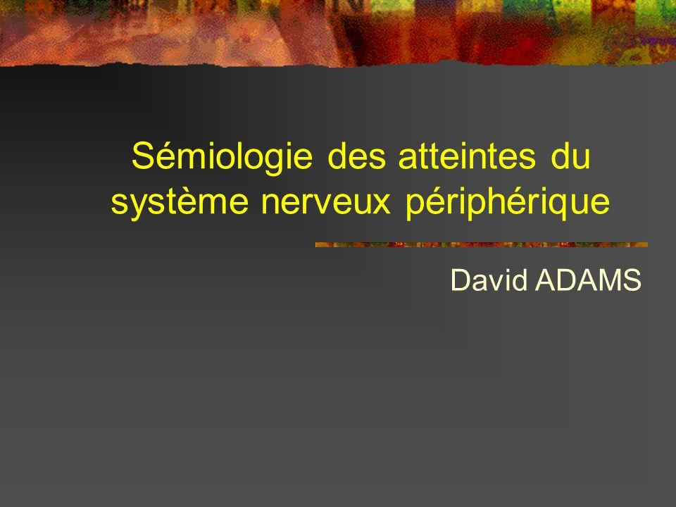 Sémiologie des atteintes du système nerveux périphérique