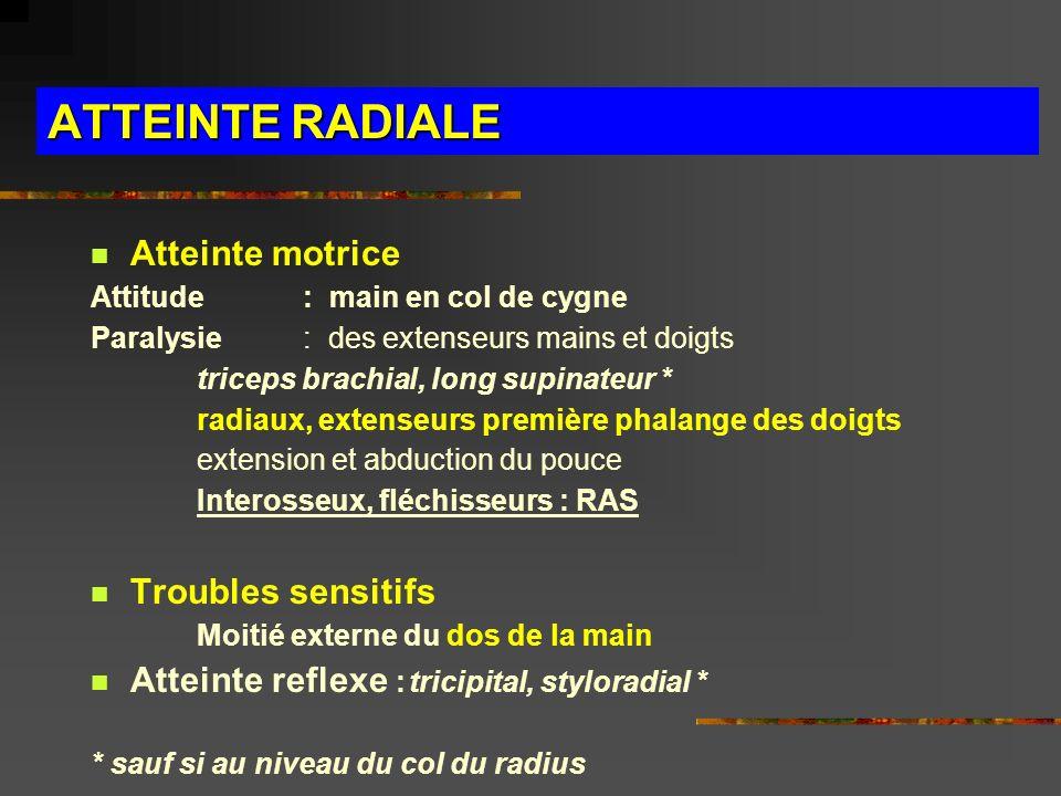 ATTEINTE RADIALE Atteinte motrice Troubles sensitifs