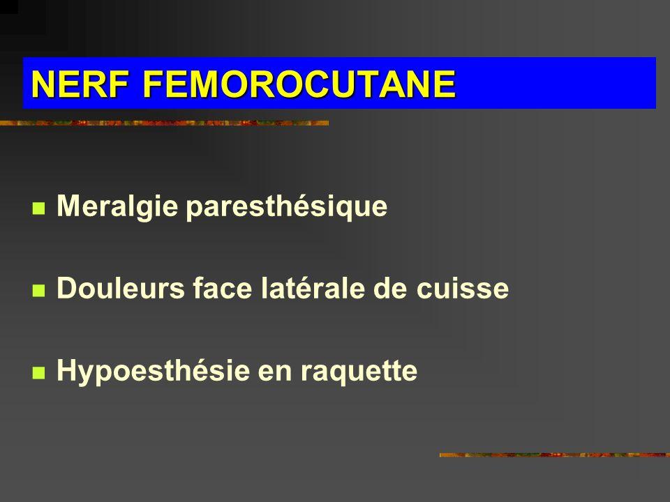NERF FEMOROCUTANE Meralgie paresthésique