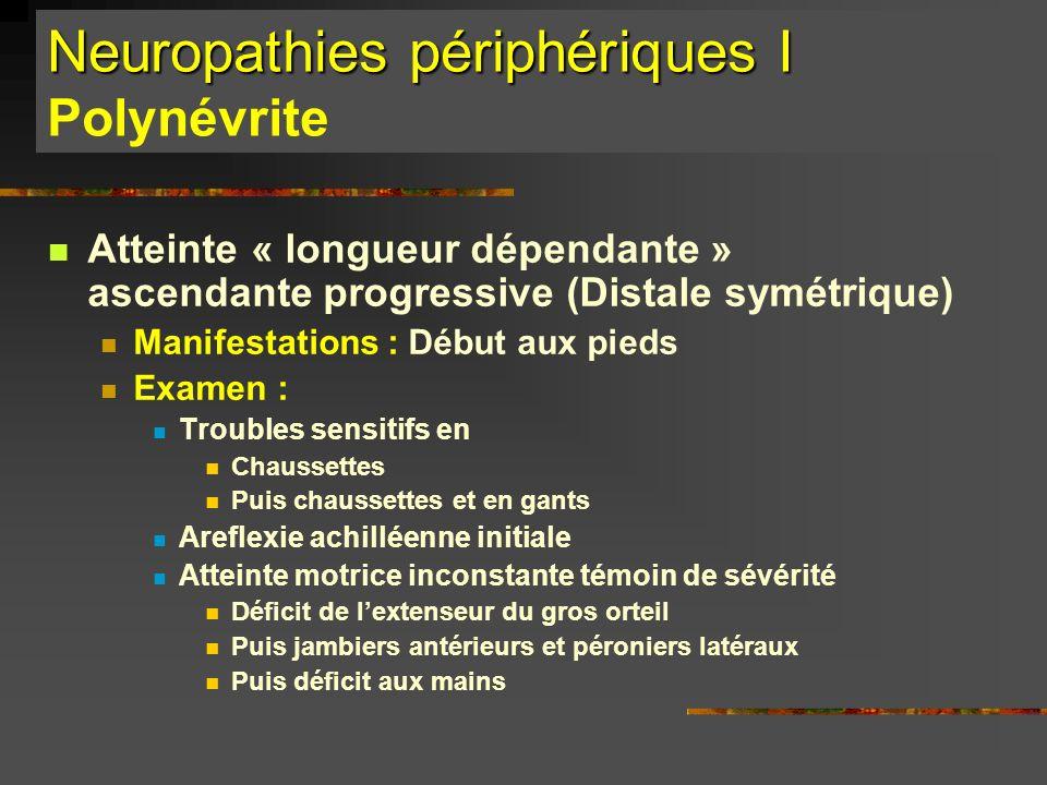 Neuropathies périphériques I Polynévrite
