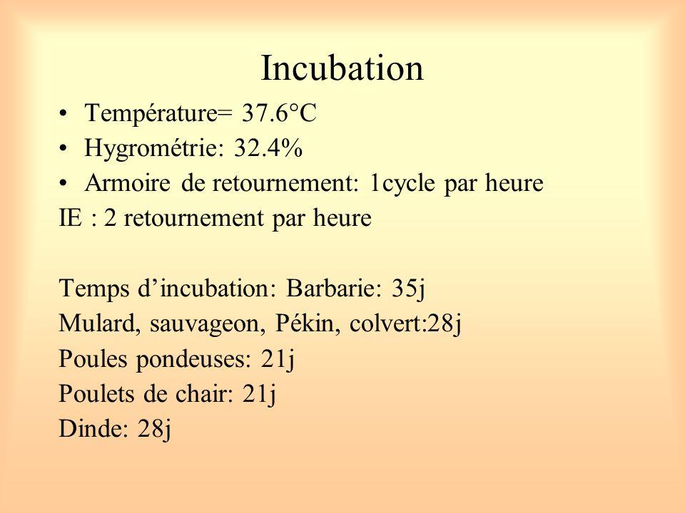 Incubation Température= 37.6°C Hygrométrie: 32.4%