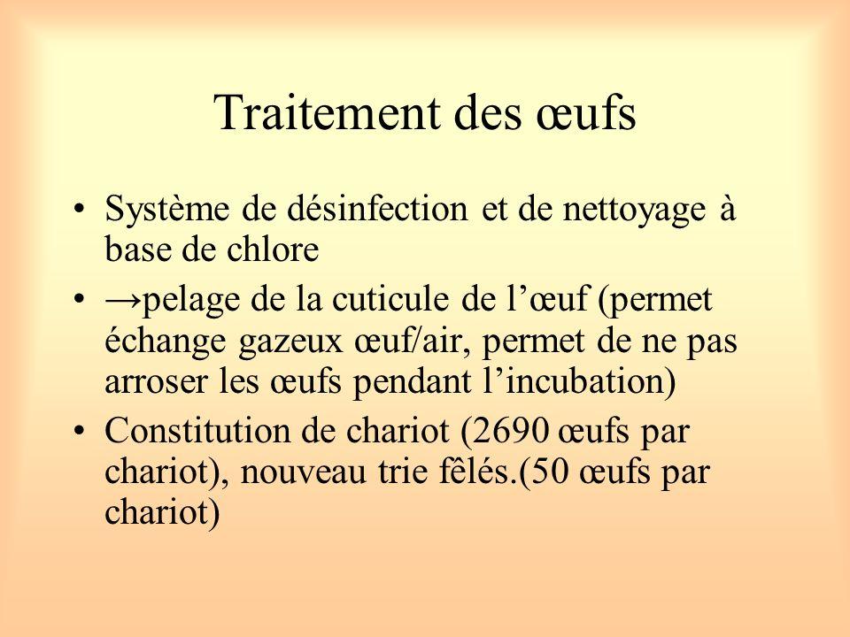 Traitement des œufs Système de désinfection et de nettoyage à base de chlore.