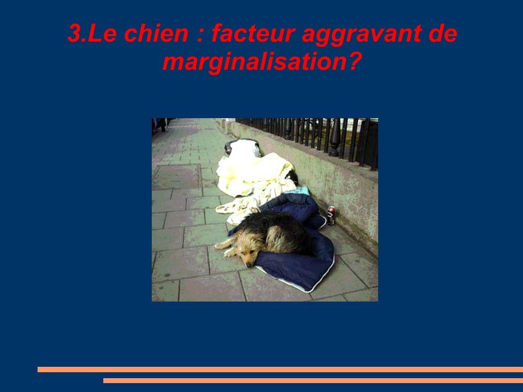3.Le chien : facteur aggravant de marginalisation