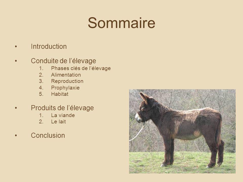 Sommaire Introduction Conduite de l'élevage Produits de l'élevage