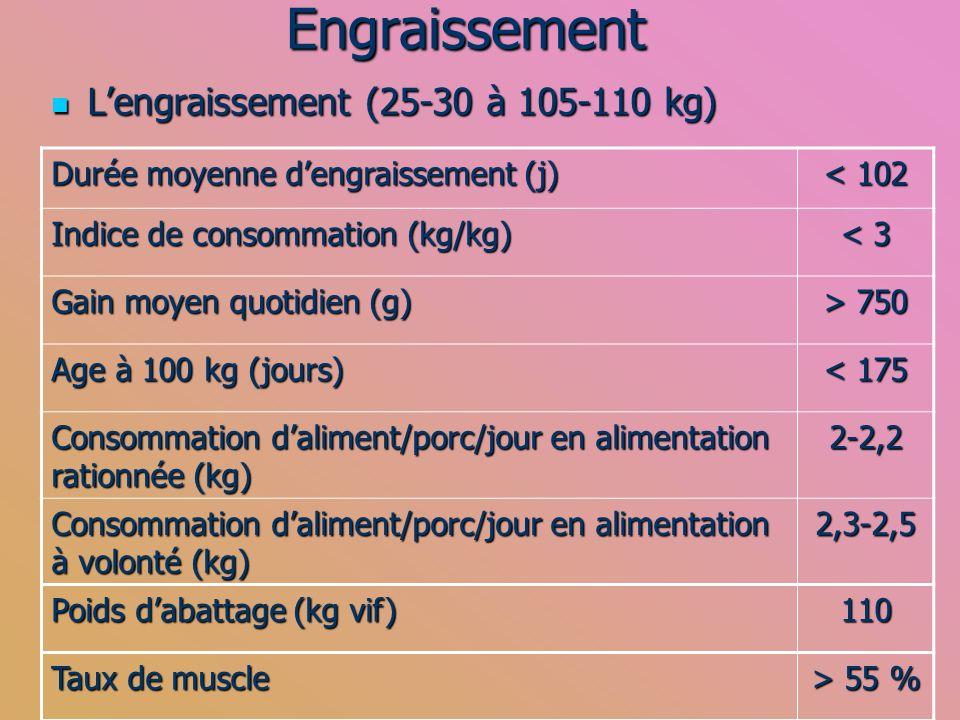 Engraissement L'engraissement (25-30 à 105-110 kg)