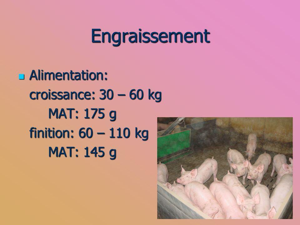 Engraissement Alimentation: croissance: 30 – 60 kg MAT: 175 g