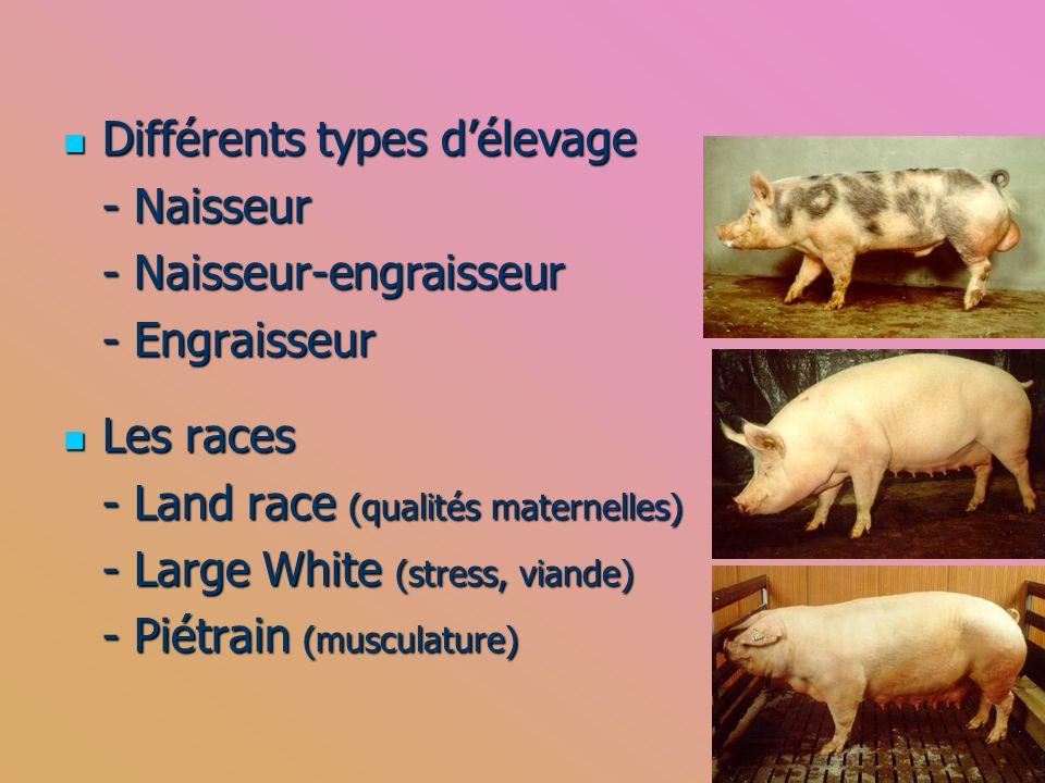 Différents types d'élevage