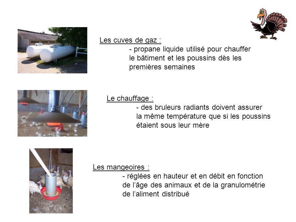 Les cuves de gaz :- propane liquide utilisé pour chauffer. le bâtiment et les poussins dès les. premières semaines.