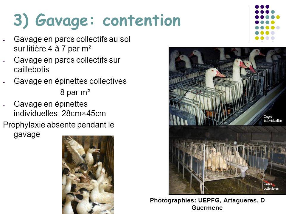 Photographies: UEPFG, Artagueres, D Guermene