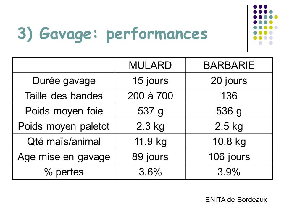 3) Gavage: performances