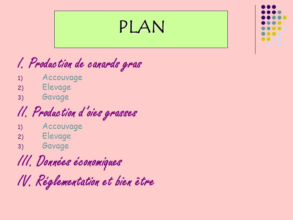 PLAN III. Données économiques IV. Réglementation et bien être