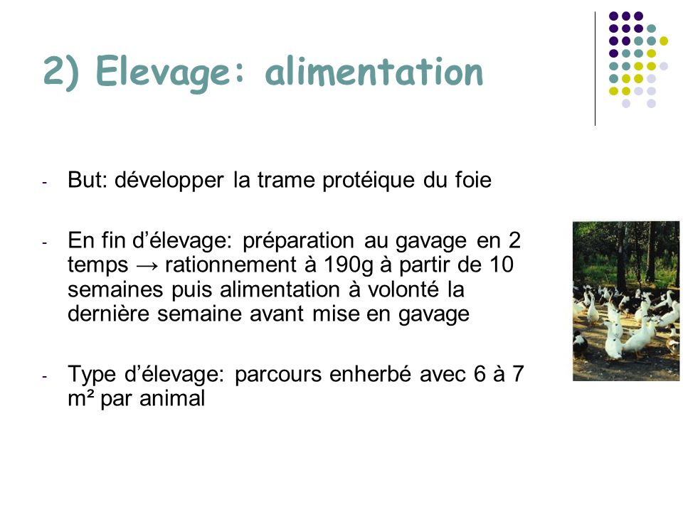 2) Elevage: alimentation