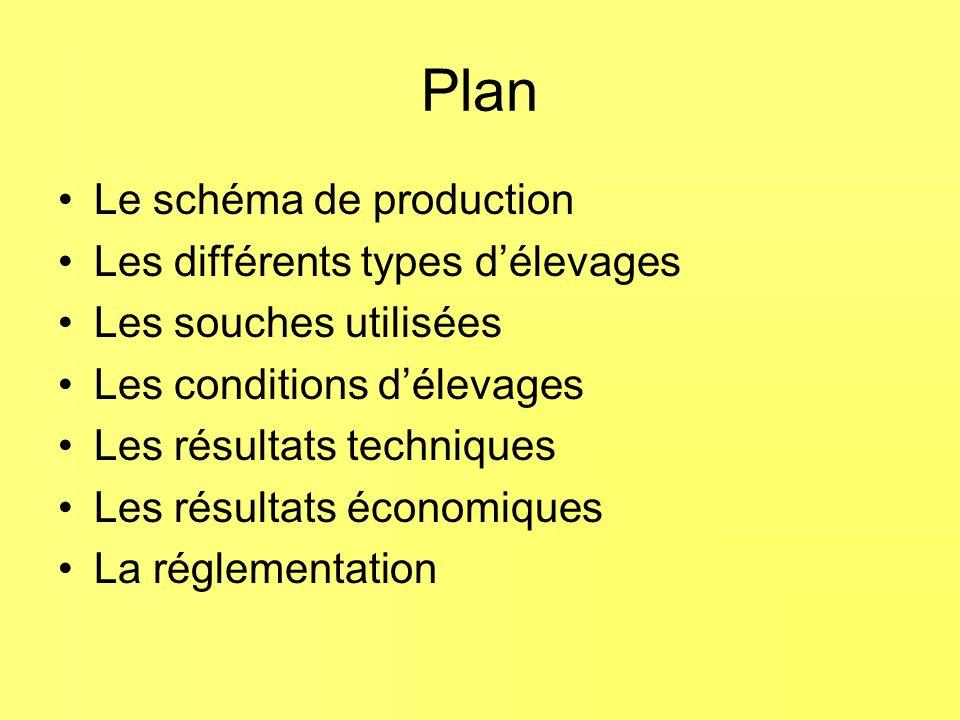 Plan Le schéma de production Les différents types d'élevages