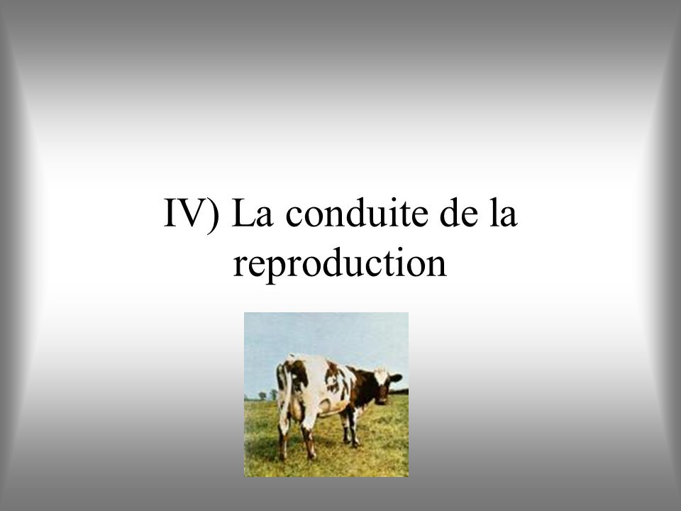 IV) La conduite de la reproduction
