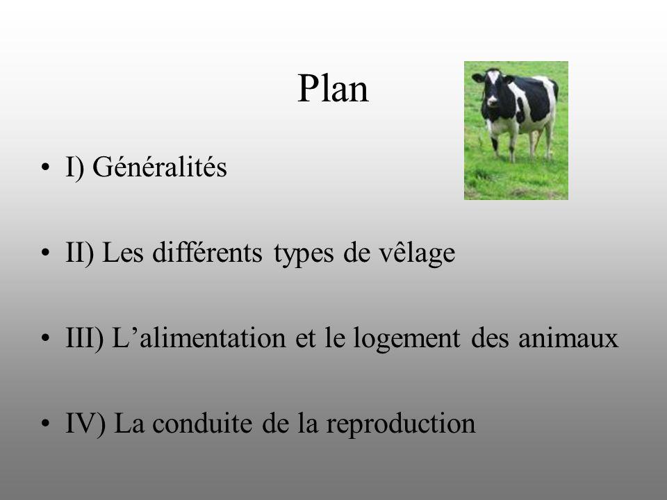 Plan I) Généralités II) Les différents types de vêlage