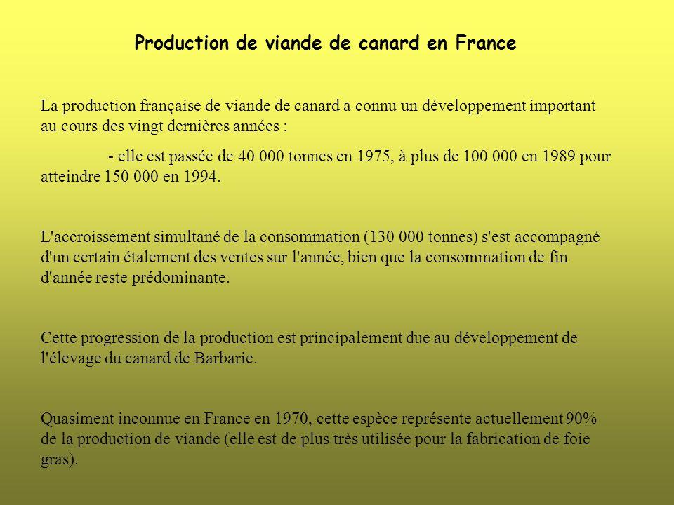 Production de viande de canard en France