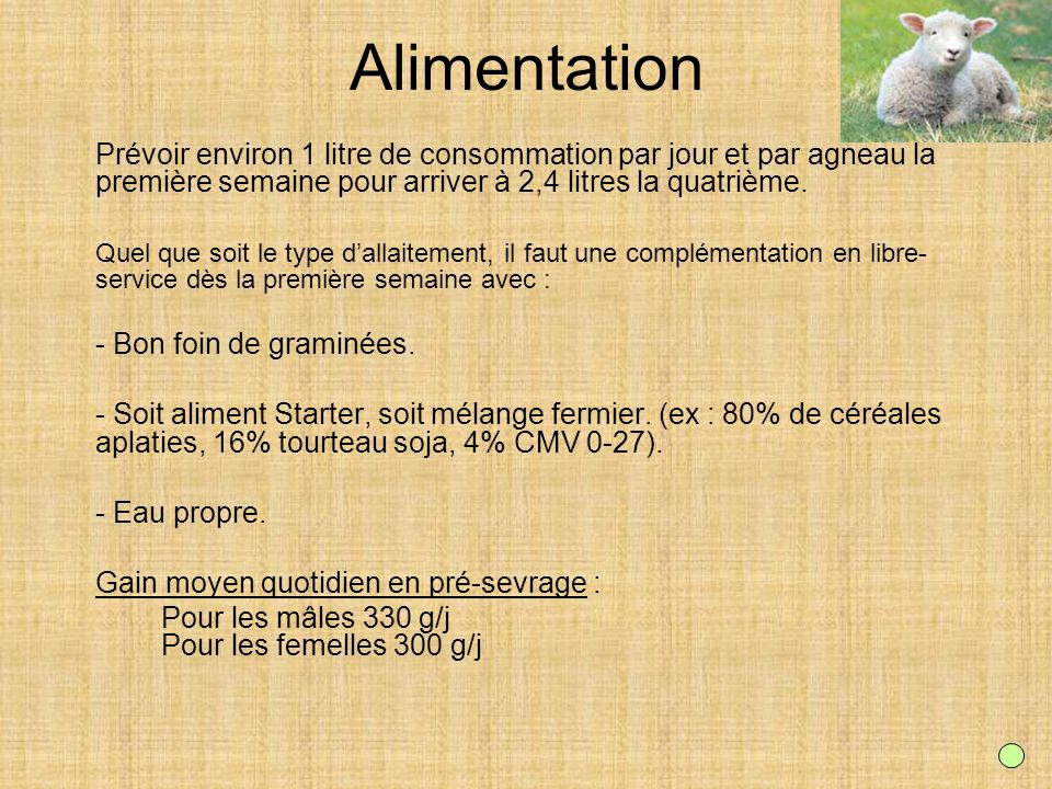 Alimentation Prévoir environ 1 litre de consommation par jour et par agneau la première semaine pour arriver à 2,4 litres la quatrième.