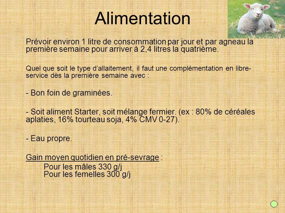AlimentationPrévoir environ 1 litre de consommation par jour et par agneau la première semaine pour arriver à 2,4 litres la quatrième.