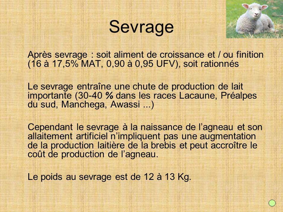 SevrageAprès sevrage : soit aliment de croissance et / ou finition (16 à 17,5% MAT, 0,90 à 0,95 UFV), soit rationnés.