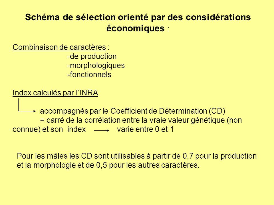 Schéma de sélection orienté par des considérations économiques :