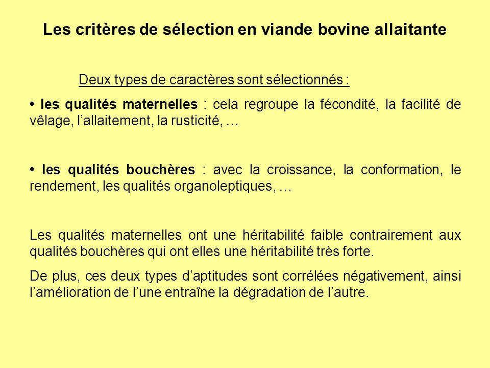 Les critères de sélection en viande bovine allaitante