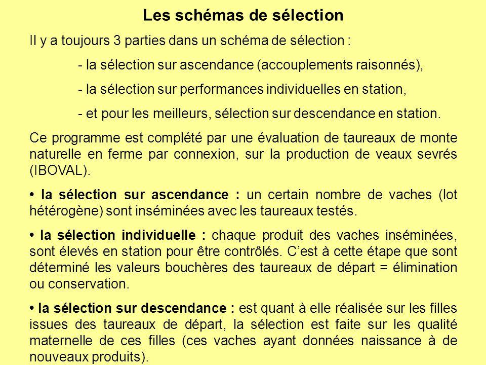 Les schémas de sélection