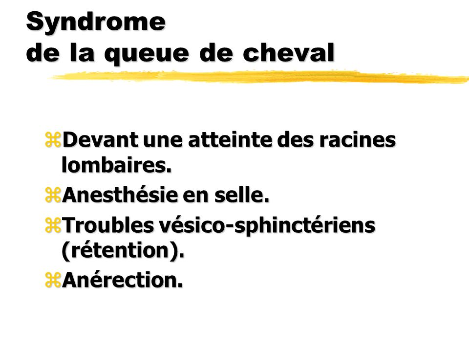 Syndrome de la queue de cheval