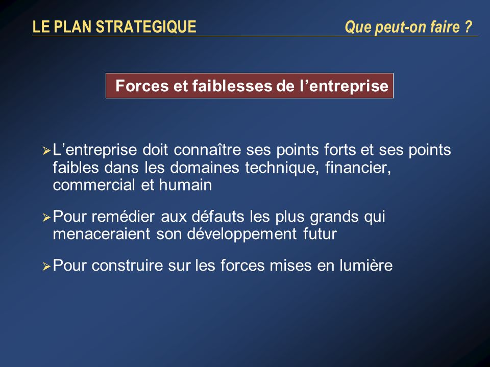 LE PLAN STRATEGIQUE Que peut-on faire