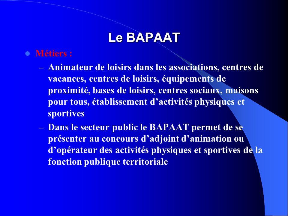 Le BAPAAT Métiers :