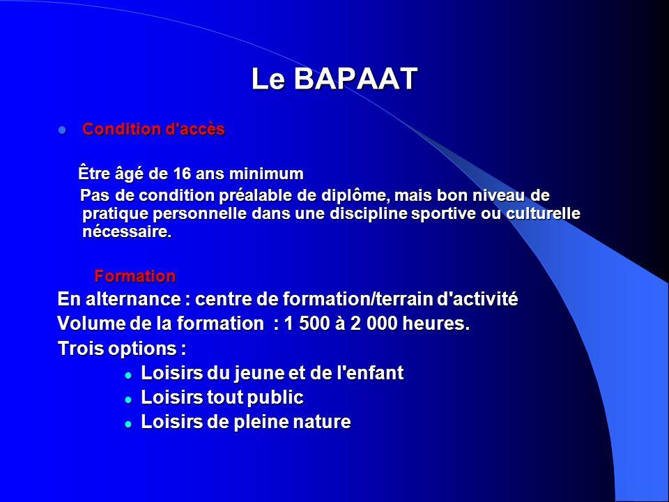 Le BAPAAT En alternance : centre de formation/terrain d activité