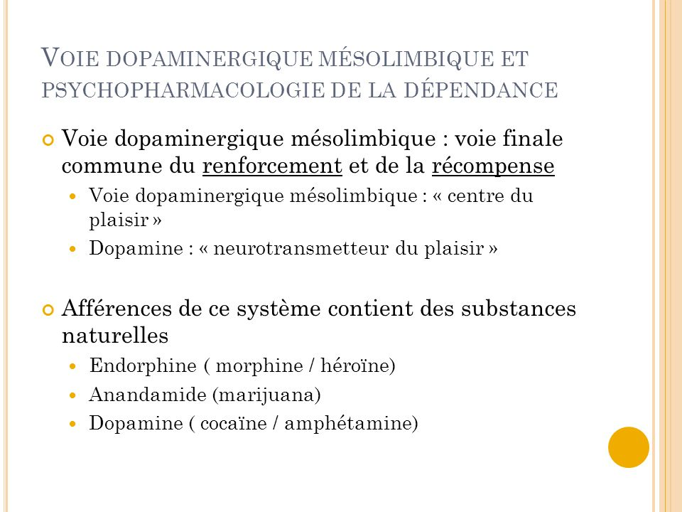 Voie dopaminergique mésolimbique et psychopharmacologie de la dépendance