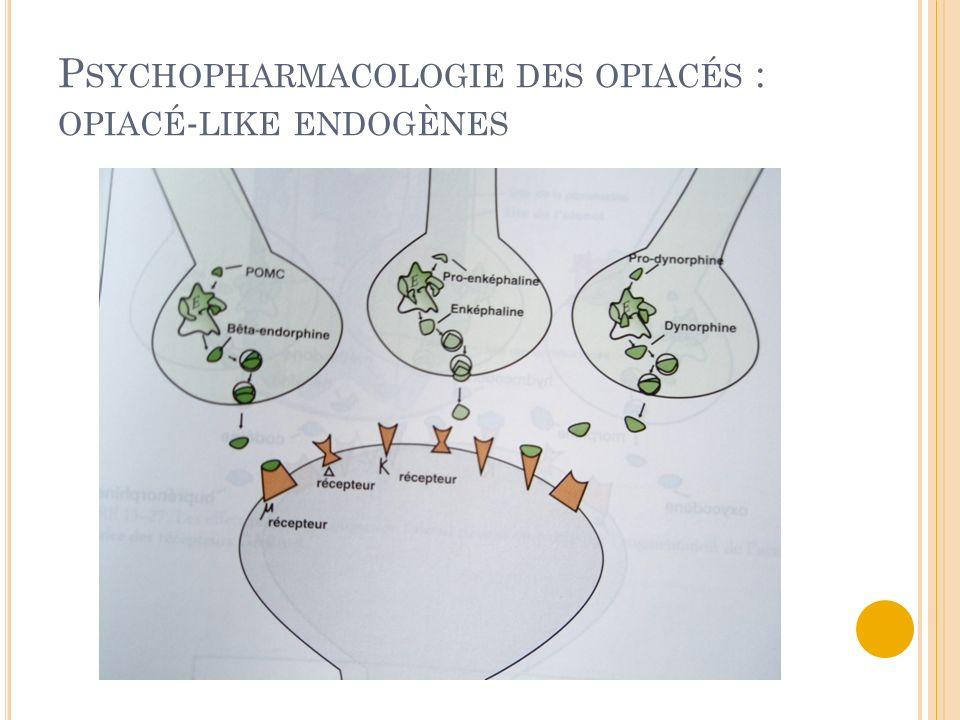 Psychopharmacologie des opiacés : opiacé-like endogènes