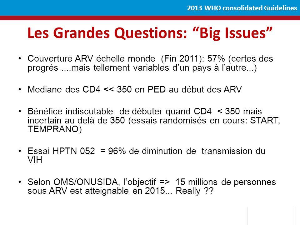 Les Grandes Questions: Big Issues