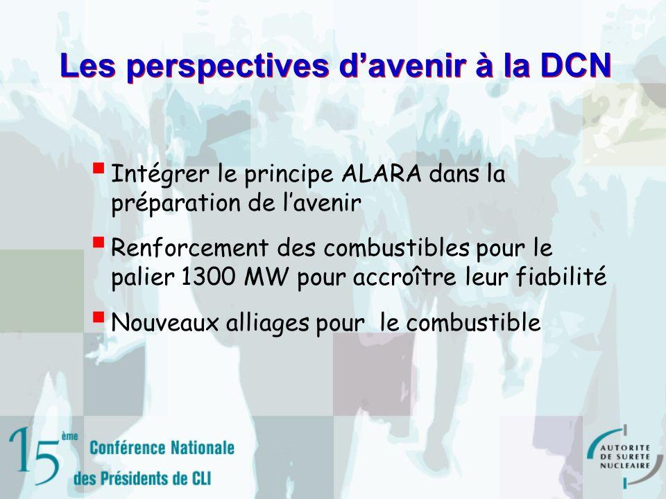 Les perspectives d'avenir à la DCN