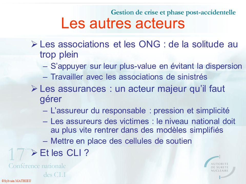 Les autres acteursLes associations et les ONG : de la solitude au trop plein. S'appuyer sur leur plus-value en évitant la dispersion.