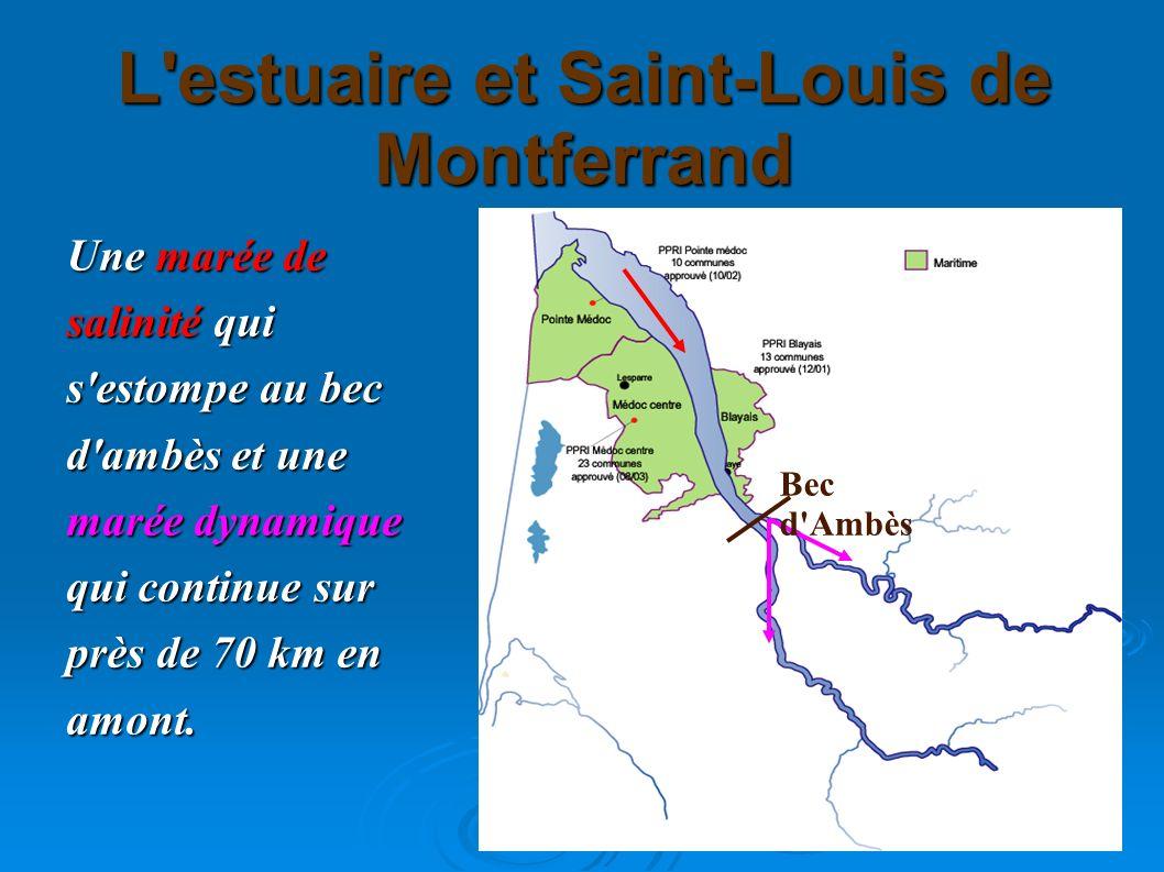 L estuaire et Saint-Louis de Montferrand