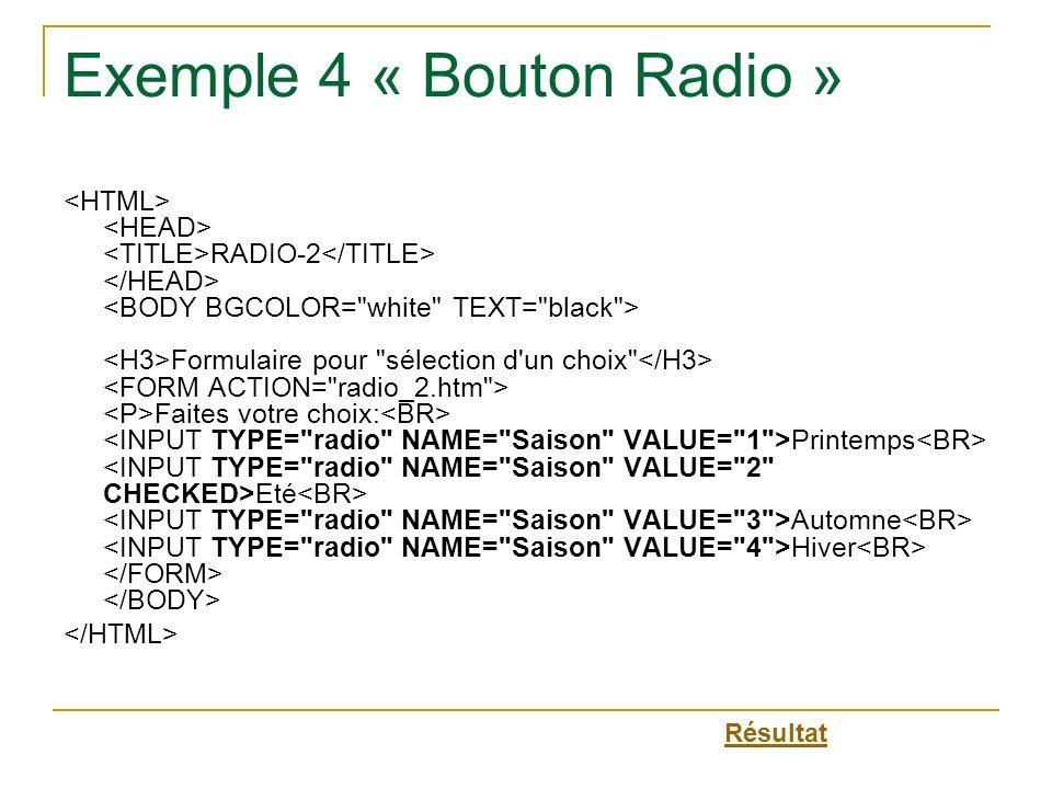 Exemple 4 « Bouton Radio »
