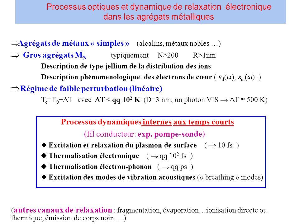 Processus optiques et dynamique de relaxation électronique