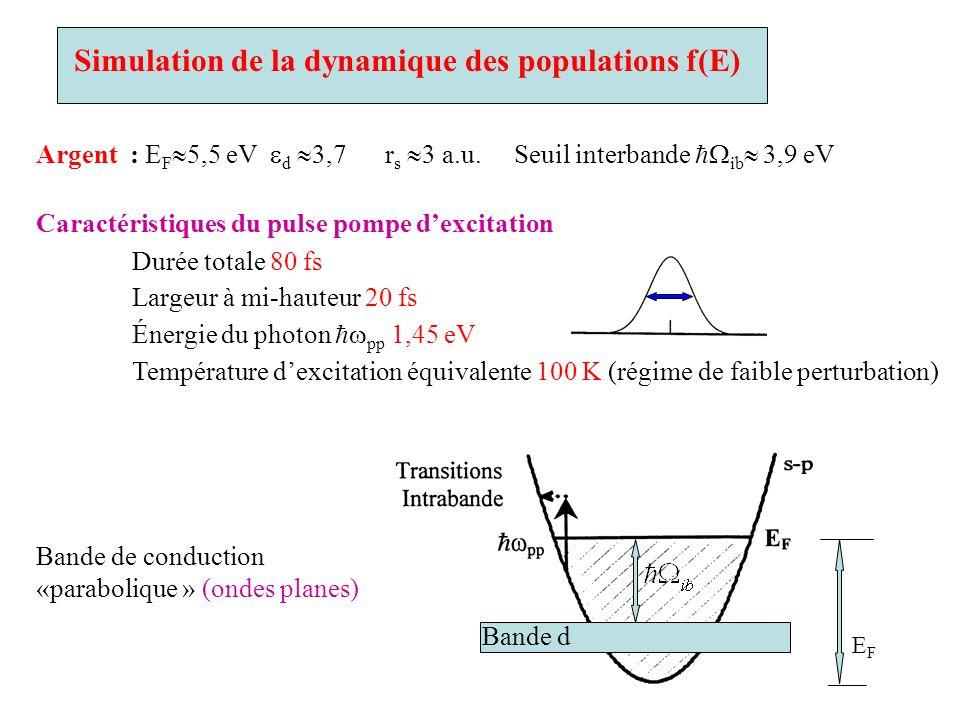 Simulation de la dynamique des populations f(E)