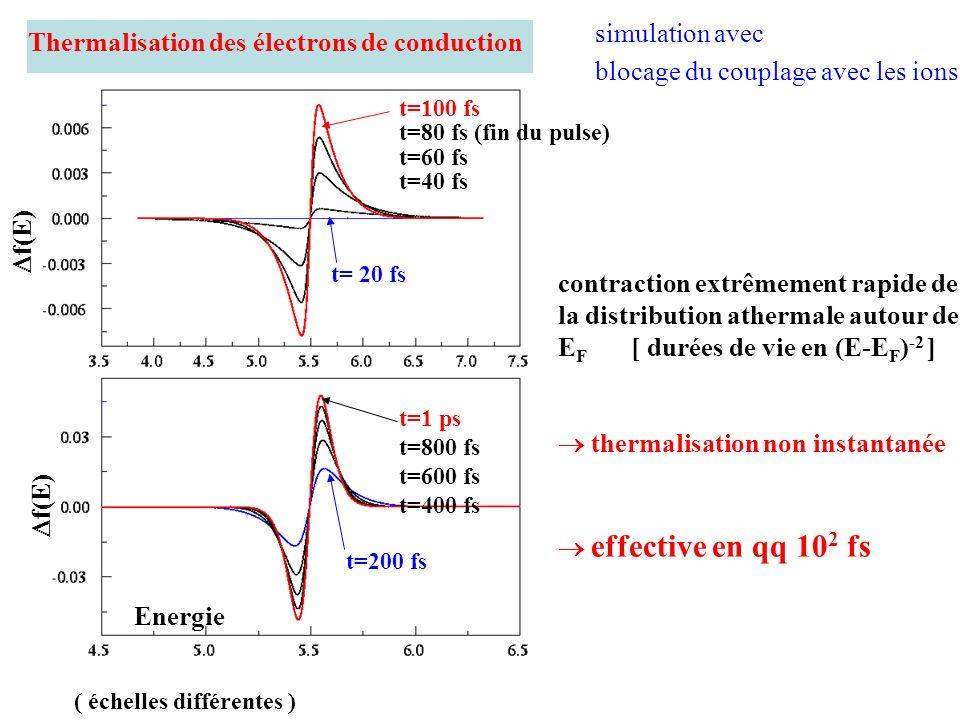 Thermalisation des électrons de conduction simulation avec