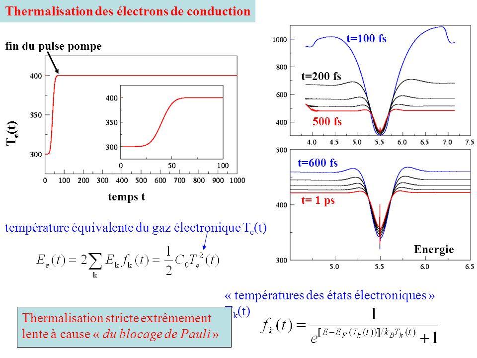 Thermalisation des électrons de conduction