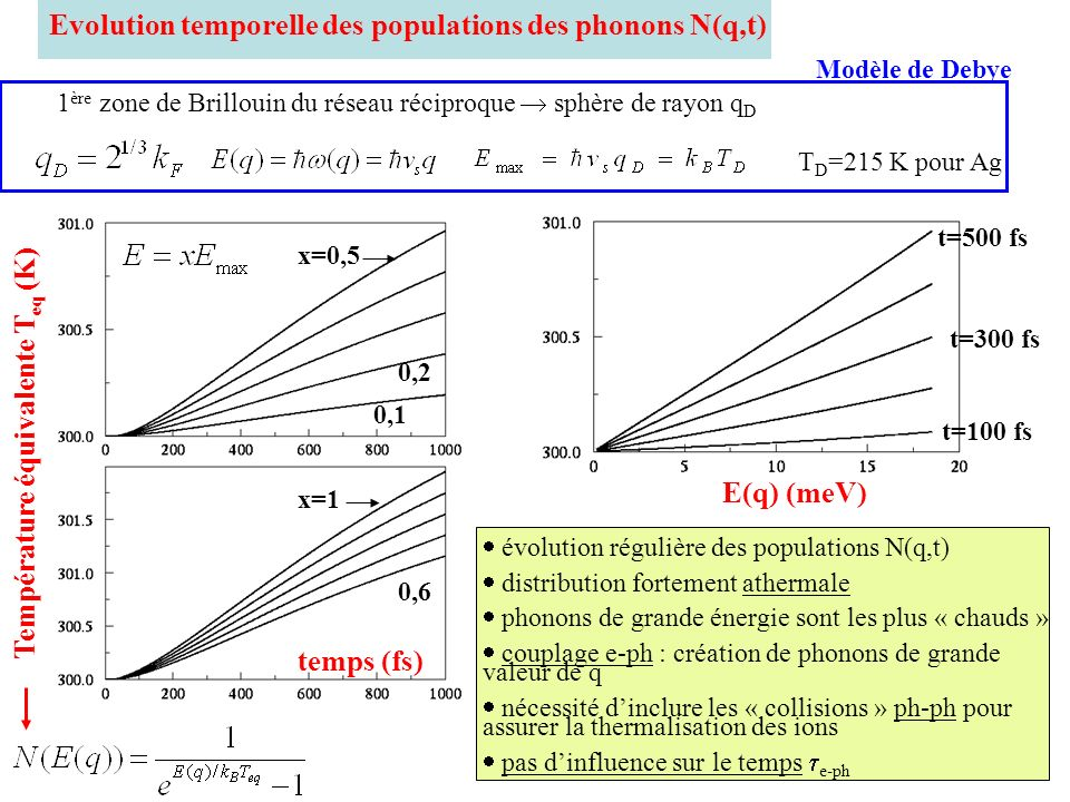 Evolution temporelle des populations des phonons N(q,t)