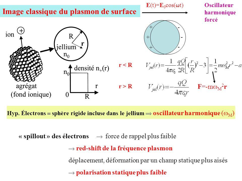 Image classique du plasmon de surface